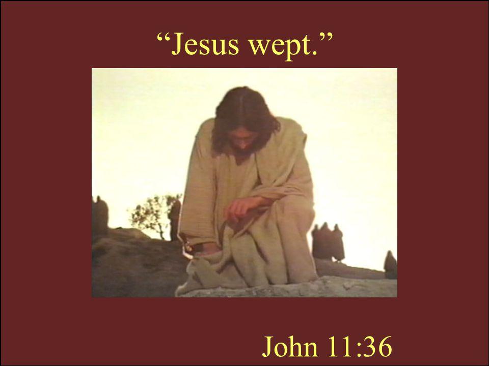Jesus wept. John 11:36