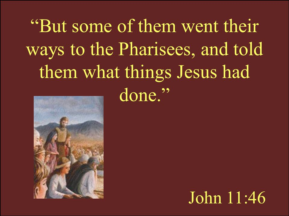 But some of them went their ways to the Pharisees, and told them what things Jesus had done.