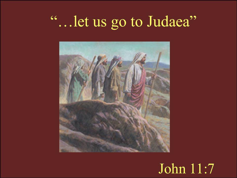 …let us go to Judaea John 11:7