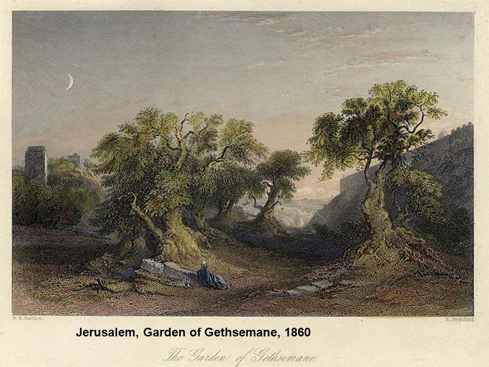 Jerusalem, Garden of Gethsemane, 1860