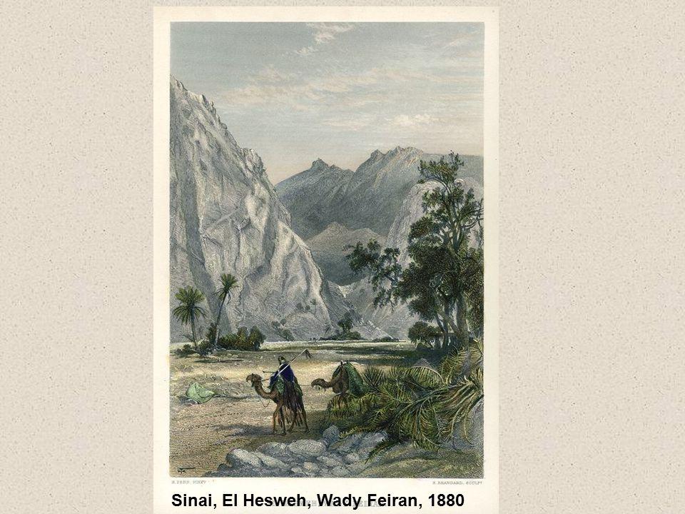 Sinai, El Hesweh, Wady Feiran, 1880