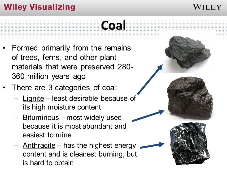 Coal Formed primarily from the remains of trees, ferns, and other plant materials that were preserved 280-360 million years ago.