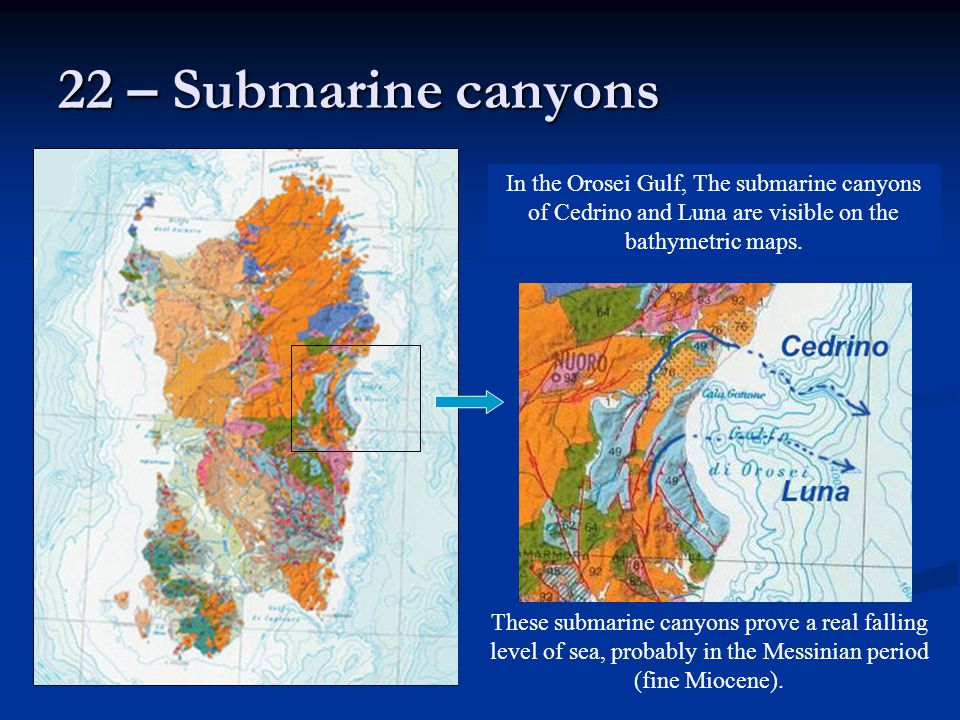 22 – Submarine canyons In the Orosei Gulf, The submarine canyons of Cedrino and Luna are visible on the bathymetric maps.