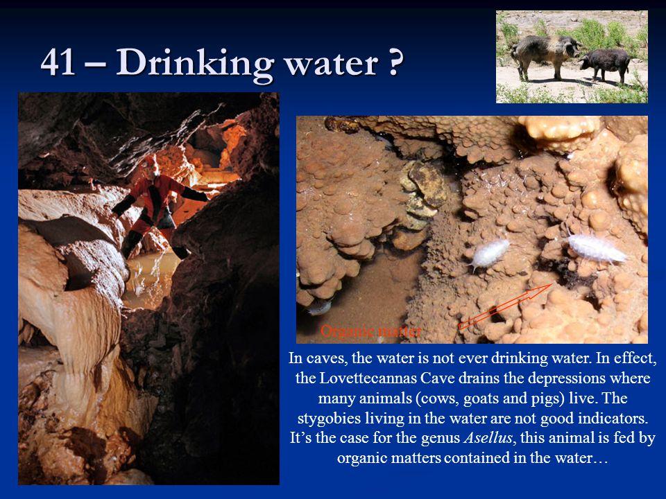 41 – Drinking water Organic matter
