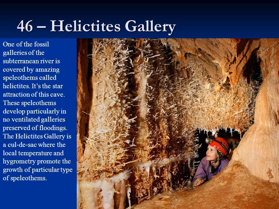 46 – Helictites Gallery