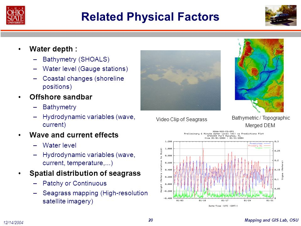 Related Physical Factors