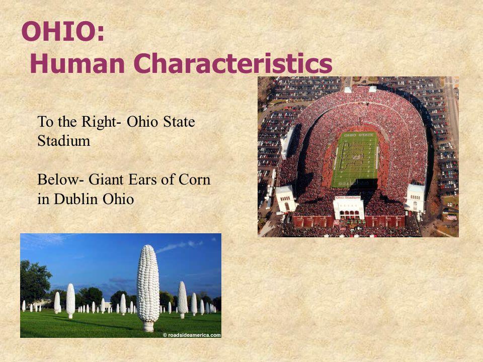 OHIO: Human Characteristics