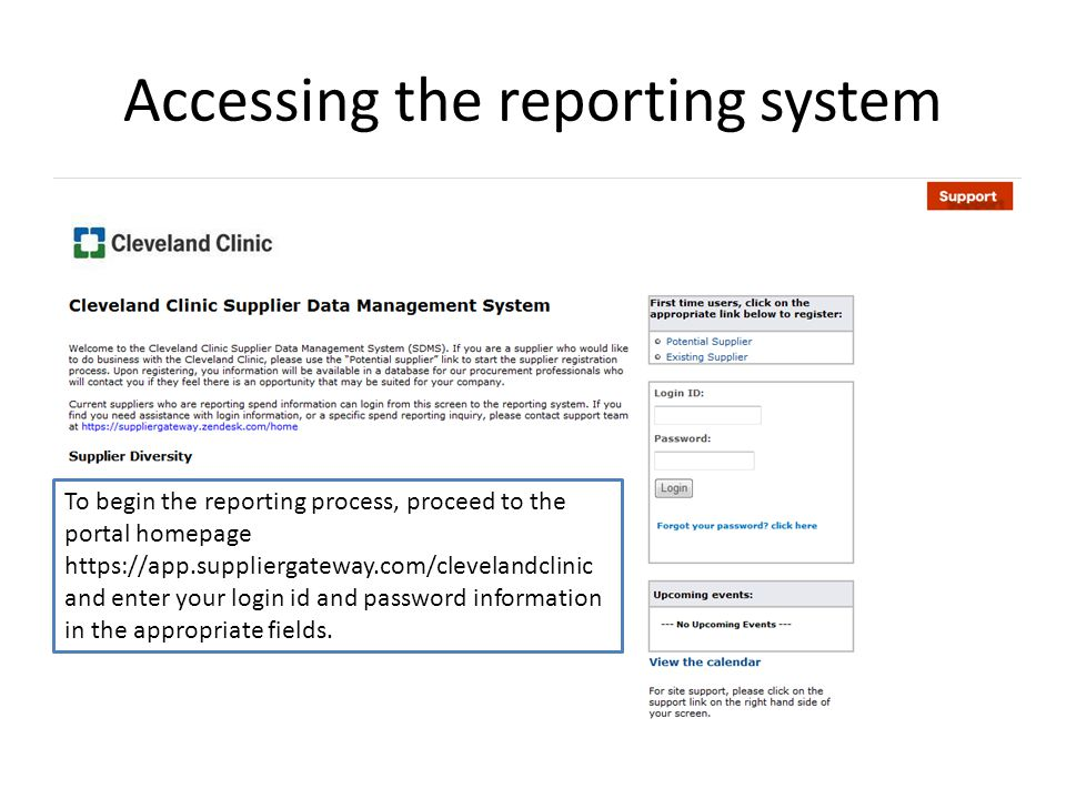 Accessing the reporting system