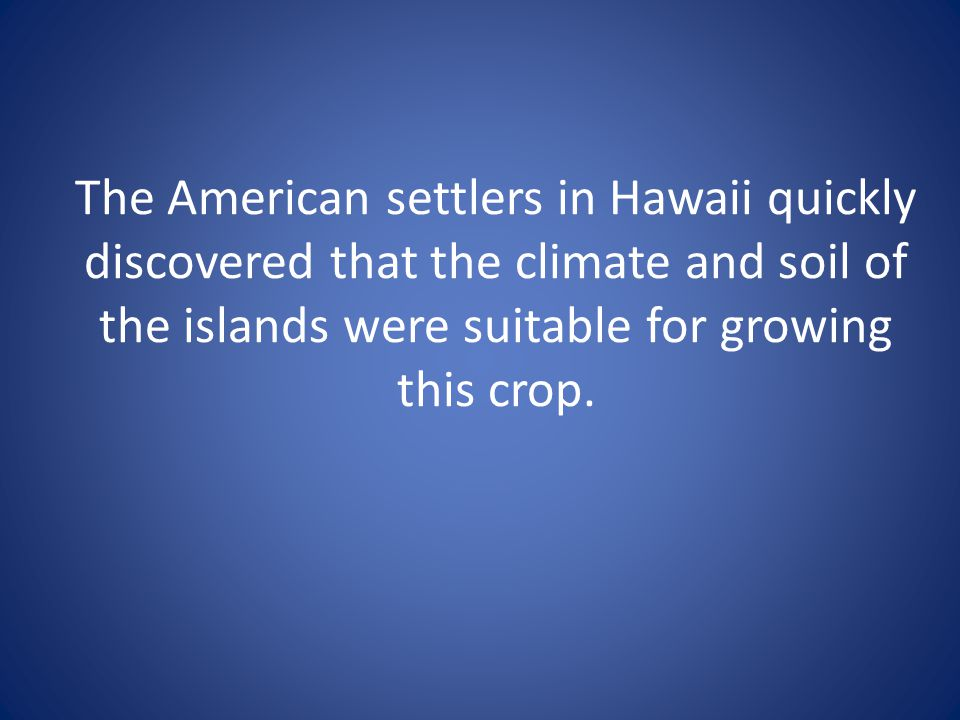 The American settlers in Hawaii quickly discovered that the climate and soil of the islands were suitable for growing this crop.