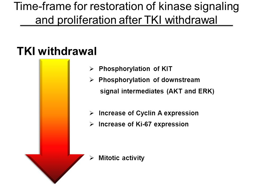 Time-frame for restoration of kinase signaling