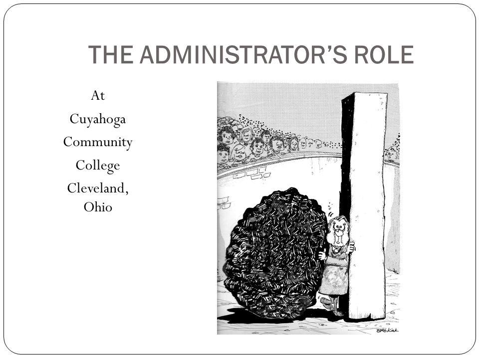 THE ADMINISTRATOR'S ROLE