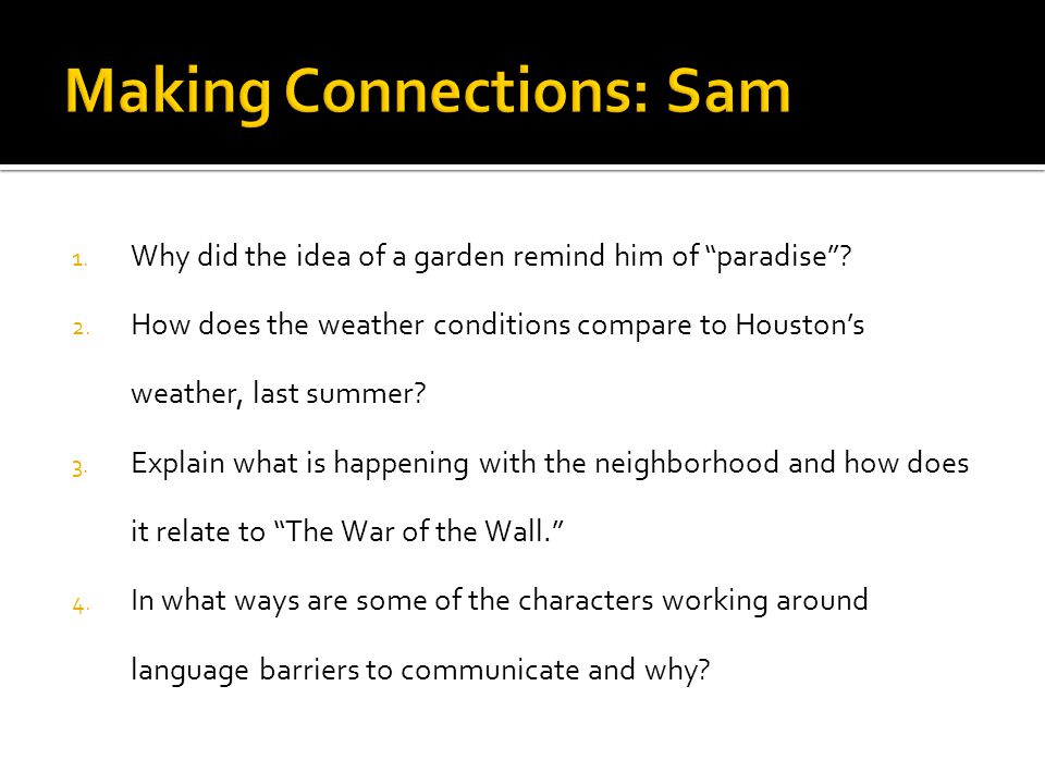 Making Connections: Sam