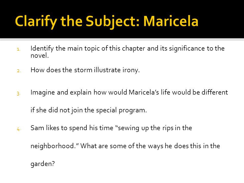 Clarify the Subject: Maricela