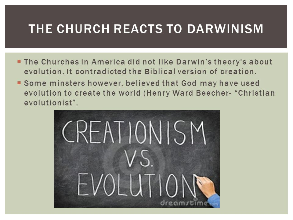 The Church Reacts to Darwinism