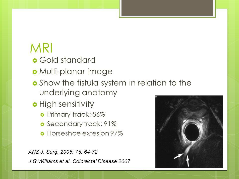 MRI Gold standard Multi-planar image