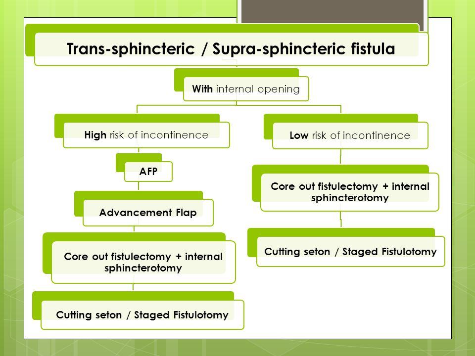 Trans-sphincteric / Supra-sphincteric fistula