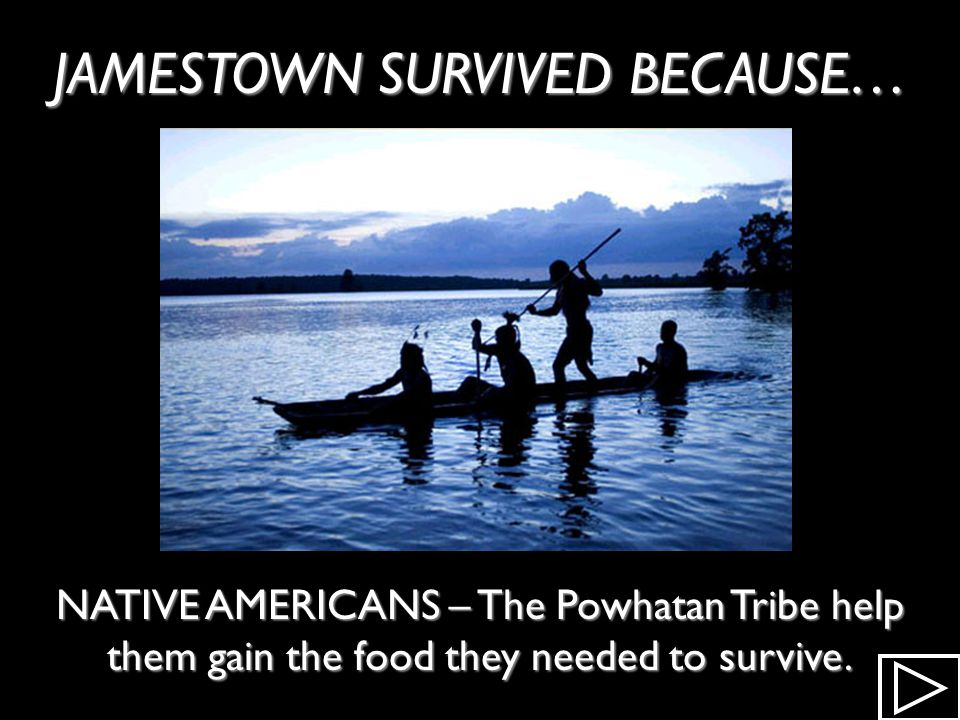 JAMESTOWN SURVIVED BECAUSE…
