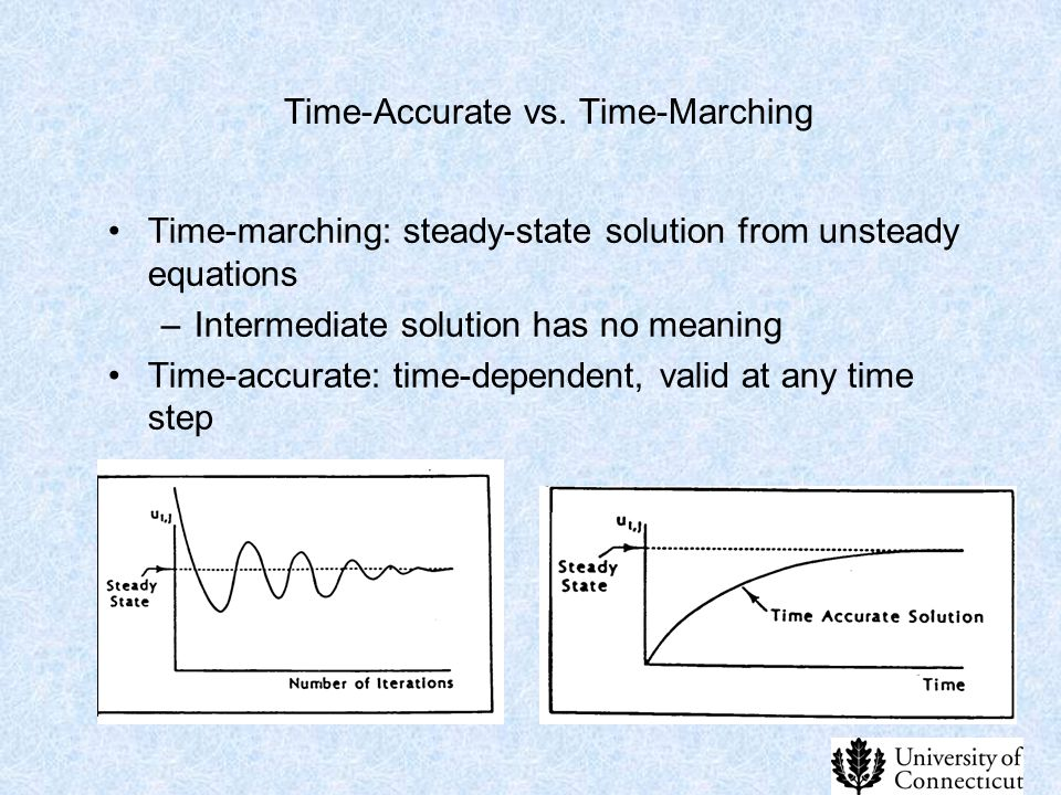Time-Accurate vs. Time-Marching