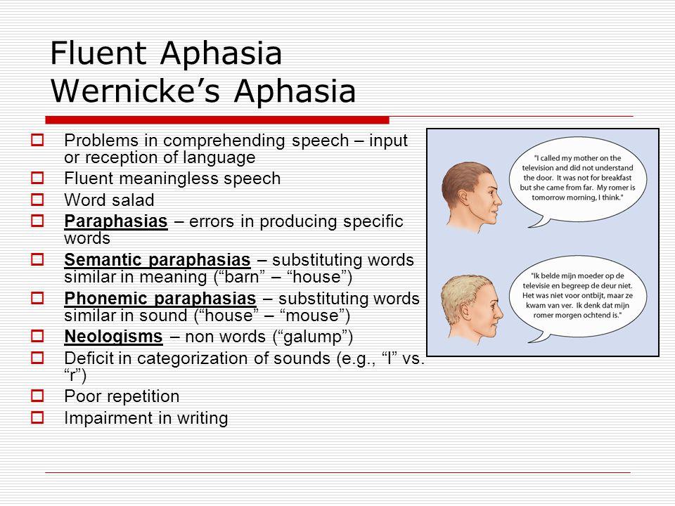 Fluent Aphasia Wernicke's Aphasia