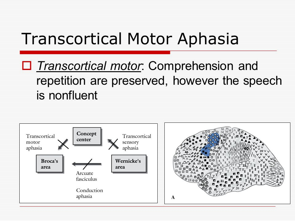 Transcortical Motor Aphasia