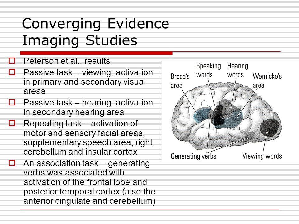 Converging Evidence Imaging Studies