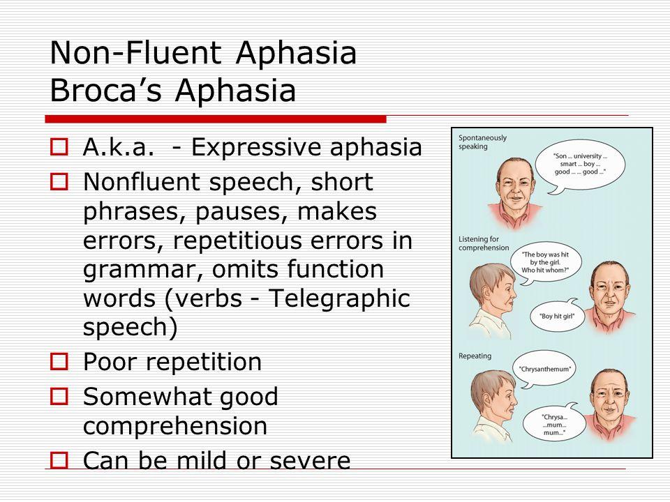 Non-Fluent Aphasia Broca's Aphasia
