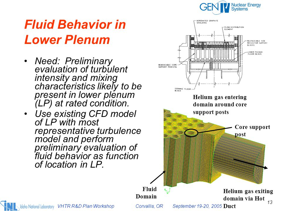 Fluid Behavior in Lower Plenum