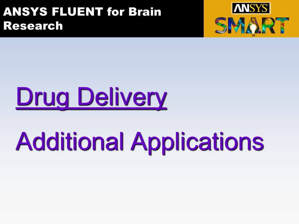 ANSYS FLUENT for Brain Research