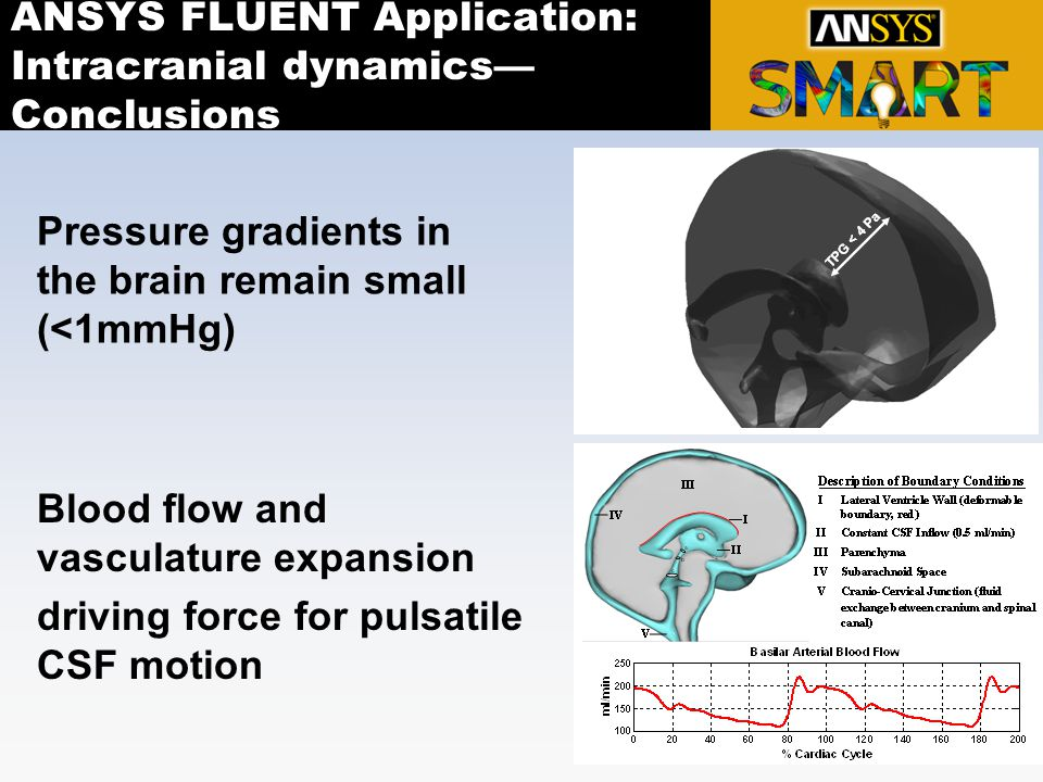 ANSYS FLUENT Application: Intracranial dynamics—Conclusions