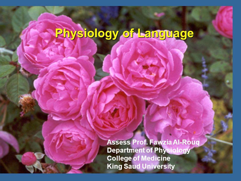 Physiology of Language