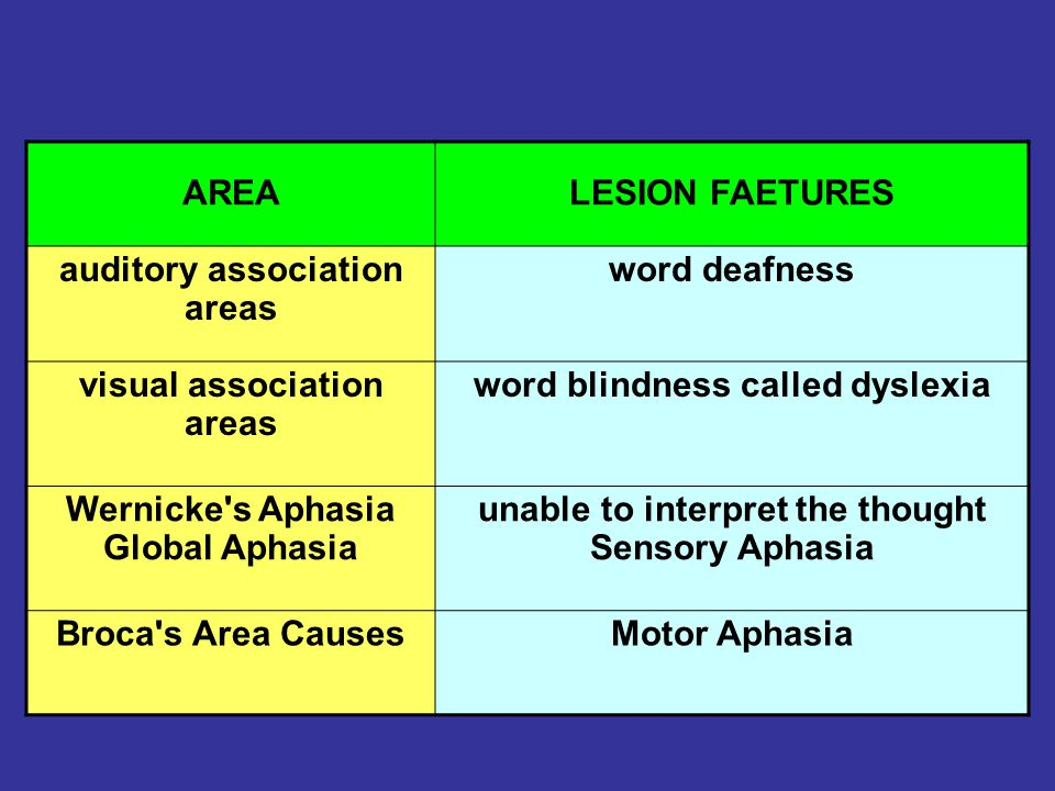 auditory association areas word deafness