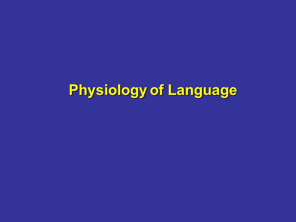 Physiology of Language