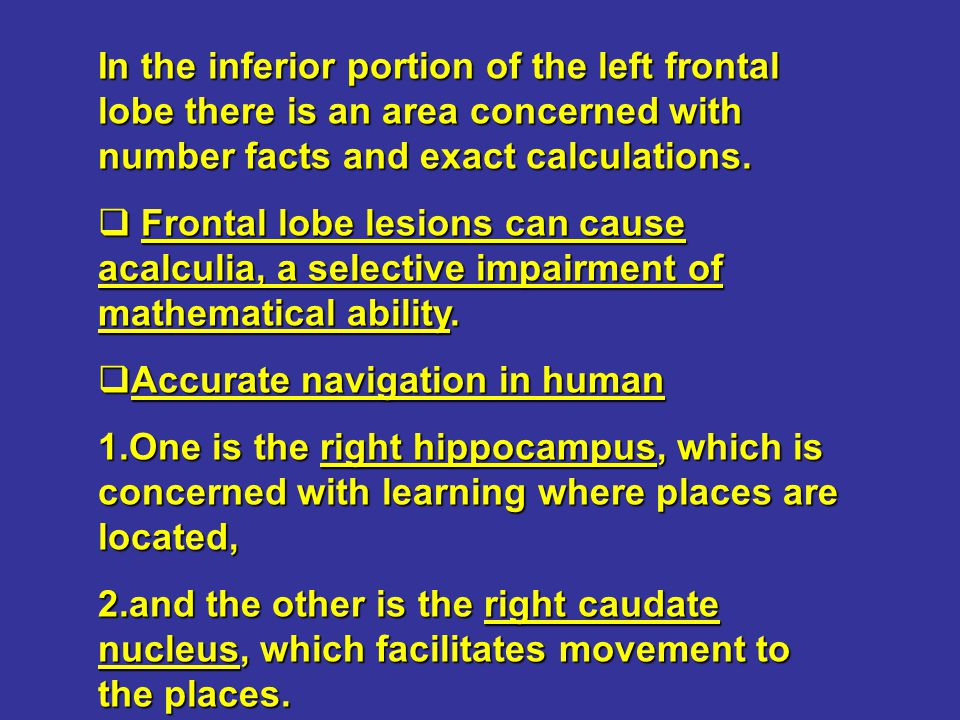 In the inferior portion of the left frontal lobe there is an area concerned with number facts and exact calculations.