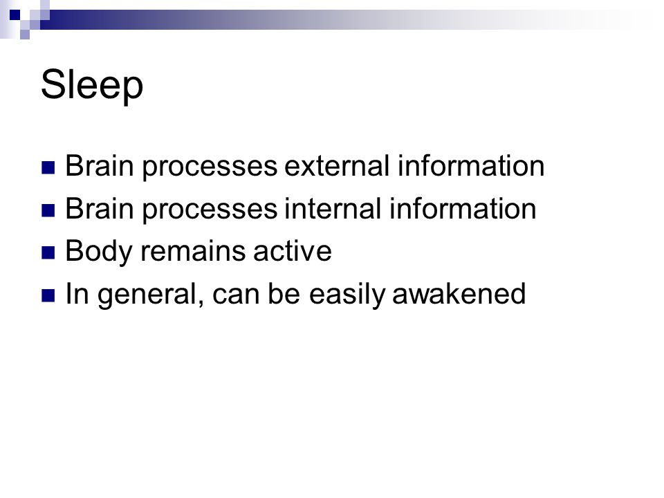 Sleep Brain processes external information