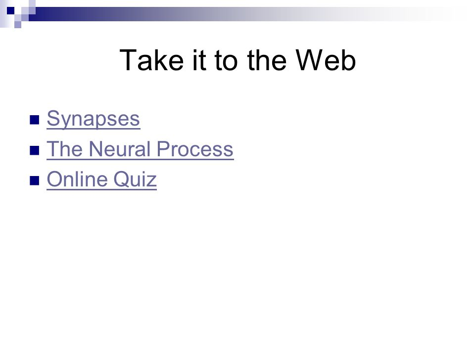Take it to the Web Synapses The Neural Process Online Quiz