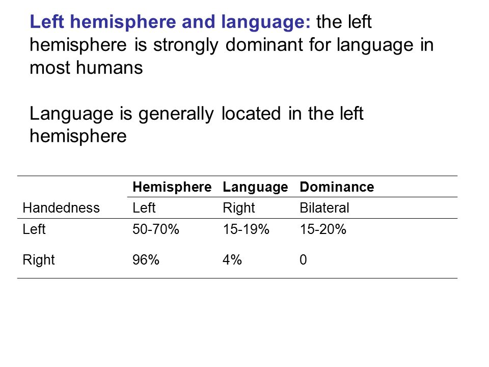 Left hemisphere and language: the left hemisphere is strongly dominant for language in most humans Language is generally located in the left hemisphere