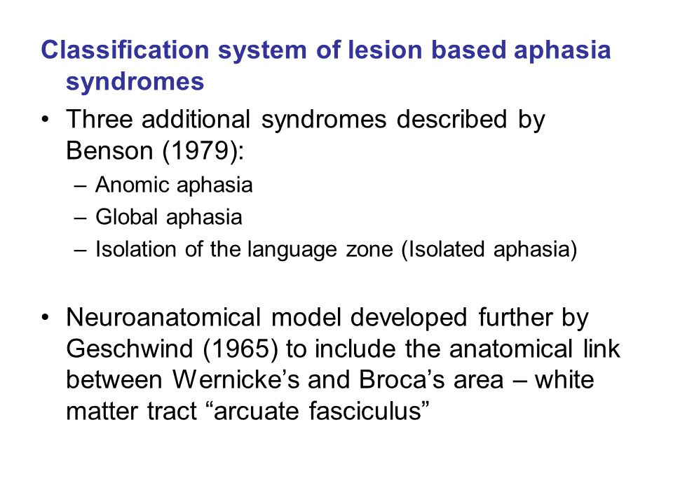 Classification system of lesion based aphasia syndromes