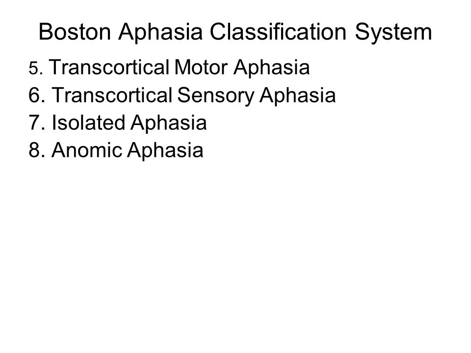 Boston Aphasia Classification System
