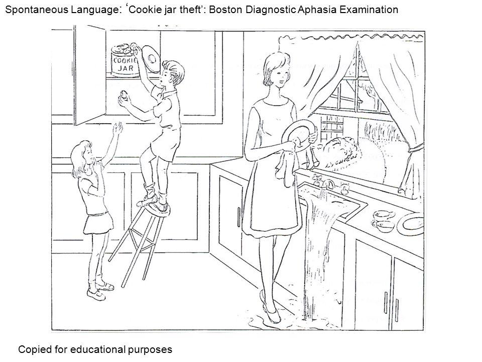 Spontaneous Language: 'Cookie jar theft': Boston Diagnostic Aphasia Examination