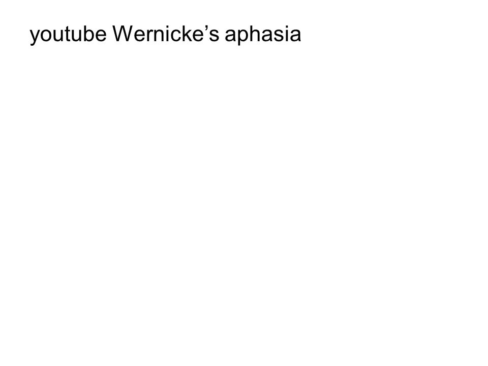youtube Wernicke's aphasia