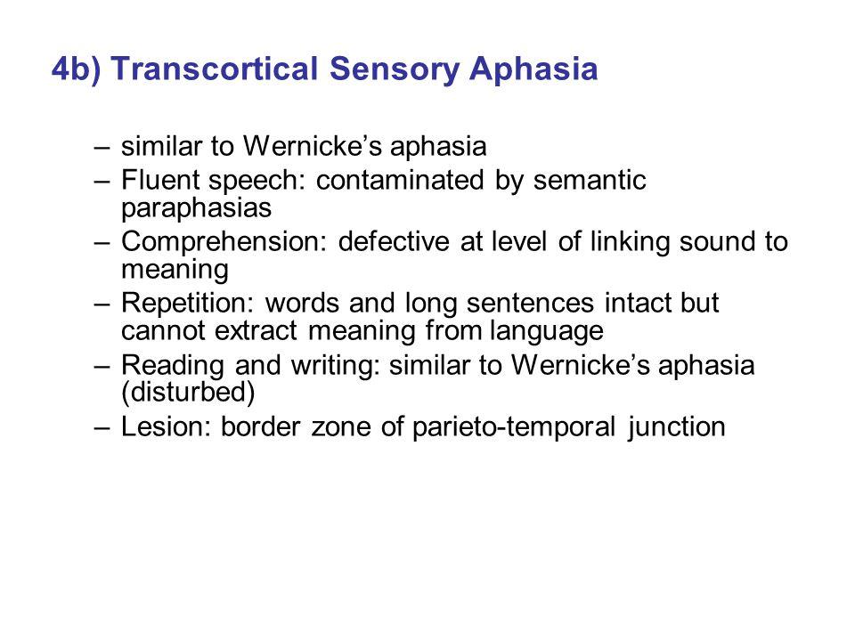 4b) Transcortical Sensory Aphasia