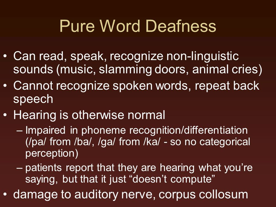 Pure Word Deafness Can read, speak, recognize non-linguistic sounds (music, slamming doors, animal cries)