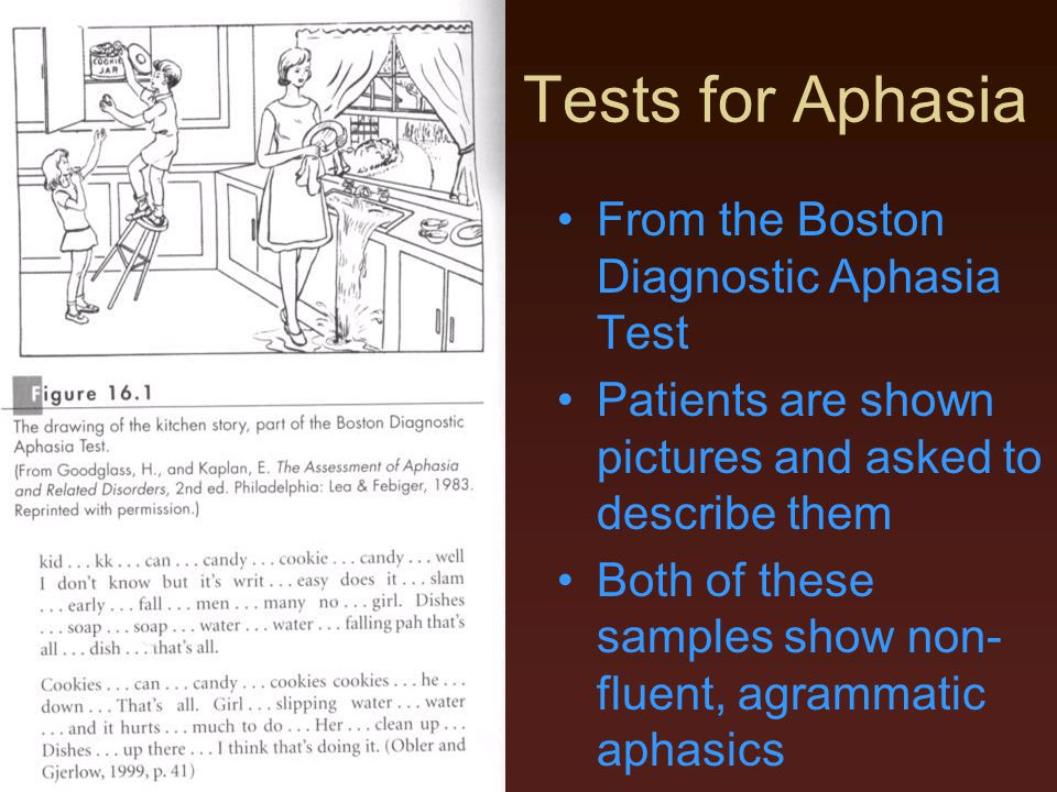Tests for Aphasia From the Boston Diagnostic Aphasia Test