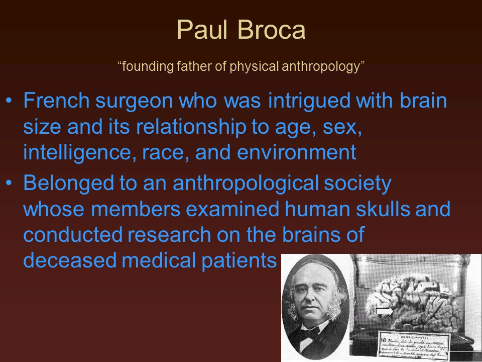 Paul Broca founding father of physical anthropology
