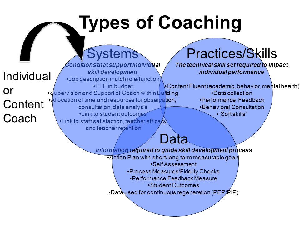 Types of Coaching Systems Practices/Skills Data Individual