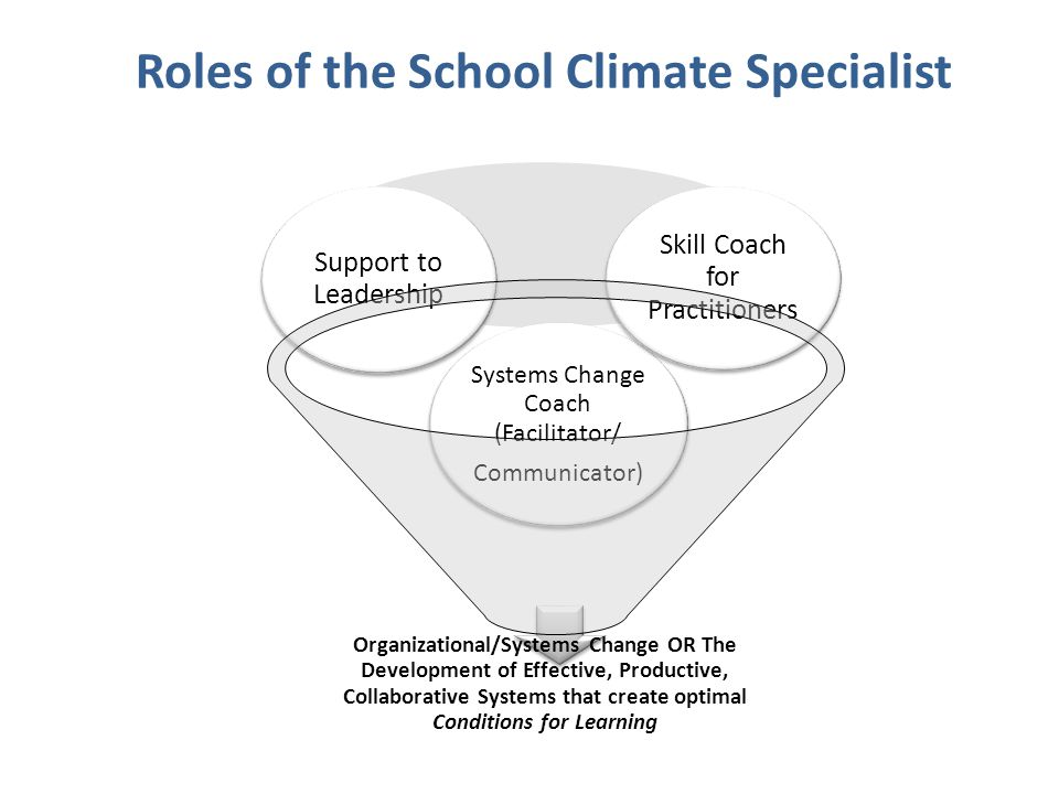 Roles of the School Climate Specialist