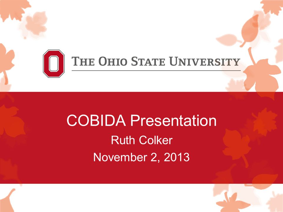 COBIDA Presentation Ruth Colker November 2, 2013