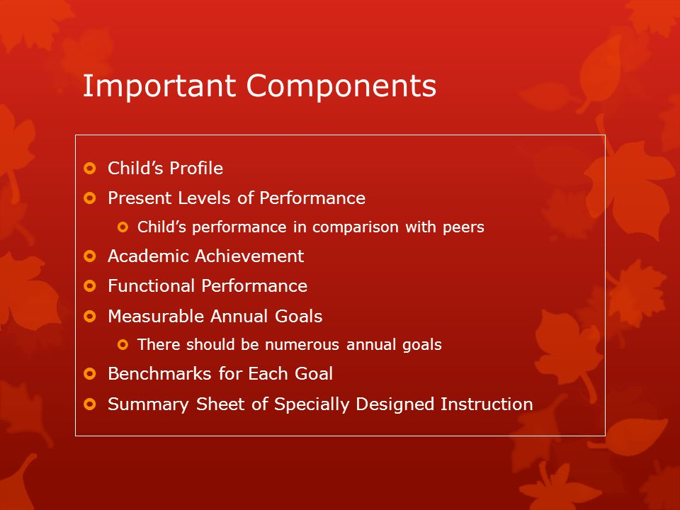 Important Components Child's Profile Present Levels of Performance
