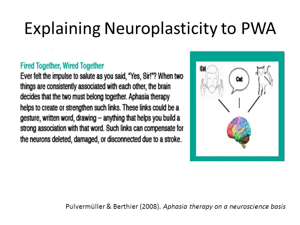 Explaining Neuroplasticity to PWA