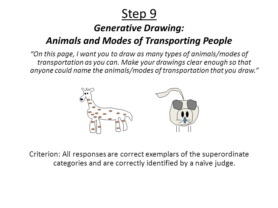 Step 9 Generative Drawing: Animals and Modes of Transporting People